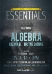 essentials - algebra